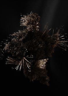 Dutch Invertuals 'No Static' visuals by Edhv New Shows, Dutch, Dandelion, Exhibitions, Random, Exploring, Flowers, Plants, Design
