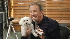 ABC comedy 'Last Man Standing' compared morally superior sore-losers to Hillary Clinton … ouch! Mike Baxter, Tim Allen, Episode Online, After Dark, Hollywood Stars, Funny People, News Today, Comedians