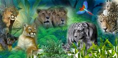 Grinch, Lion, Animals, Leo, Animales, Animaux, The Grinch, Lions, Animais