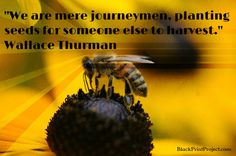 We are mere journeymen, planting seeds for someone else to harvest.~ Wallace Thurman