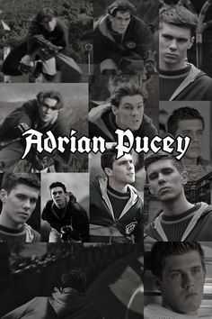 Adrian Pucey Harry Potter Toms Harry Potter Pictures Harry Potter Fan