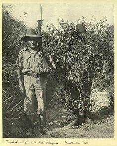 Çannakale savaşlarında bir keskin nişancı, kamufle olmuş şekilde.. 1915