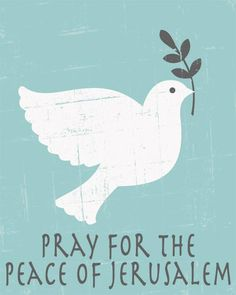Pray for the peace of Jerusalem... But stand with them if a fight comes!!