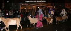 annual Christmas Nativity Parade in Berlin, Ohio - 2014 Berlin Ohio, Amish Country Ohio, Holmes County, Christmas Events, Walnut Creek, Christmas Nativity, Places To Go, Horses, Spaces