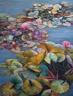Marie Cameron Pond Lily Profusion 2012