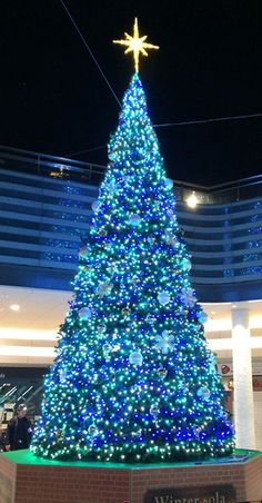 blue Christmas without youoooooo. White Christmas Lights, Modern Christmas Decor, Unique Christmas Trees, Blue Christmas, Christmas Images, Outdoor Christmas, Beautiful Christmas, Christmas Tree Angel, Christmas World