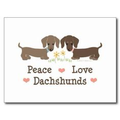 Peace. Love. Dachshunds.                                                                                                                                                      More