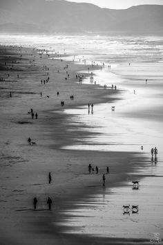 to the CliffHouse (San Francisco)— Roberto Pieraccini