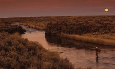 The Little Wood River in Fall  Catch Magazine - Fly Fishing Video - Film - Photography