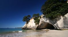 The Coromandel 20 Must Do's: The Coromandel is blessed with a massive selection of natural attractions & activities. Here's a sample of the Top 20 Must Do Activities in The Coromandel.