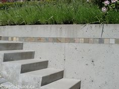 concrete steps and lavender