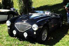 #Austin Healey Cars
