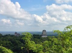 New Year's Day 2013:  View from the top of    Temple IV - Tikal National Park, El Peten, Guatemala...Absolutely breathtaking!!!