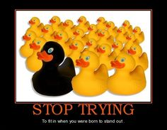 Stop trying..  - funny pictures #funnypictures