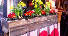 Frau Marlies Rottmeier von MAD – my lifestyle beauftragte uns mit der Gestaltung und Produktion eines Palettenkundenstoppers für ihren Laden an der Plettenberger Straße in Melle.  Wir gestalteten den Kundenstopper zunächst mit dem Logo des Unternehmens und druckten dieses anschließend auf die Paletten. Als besonderen Eyecatcher statteten wir den Palettenkundenstopper noch mit einem Blumenkastenaufsatz inkl. Blumenkübel, fix und fertig zum Bepflanzen - das nennen wir echten Rundumservice!