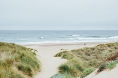 Dunes and ocean scene on my California Road trip: Tomales Bay - Kehoe Beach | Emilie Waugh Photography