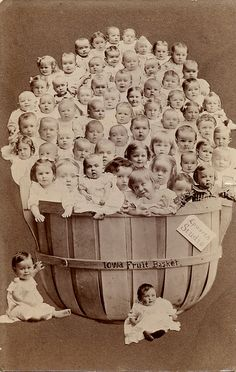 A Basket of Babies - Real Photo Postcard by Photo_History -