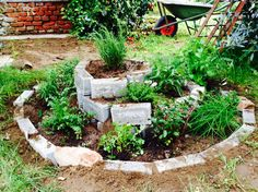Orto piante aromatiche Yard, Patio, Yards, Courtyards, Court Yard, Garden