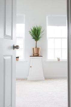 I'm rounding up my 10 best painted furniture projects and sharing them today. Painted desks, dressers, nightstands, plant stands, and more. Yucca Plant Indoor, Yucca Plant Care, Indoor Plants, Living Room Furniture, Home Furniture, Painted Night Stands, Painted Furniture, Painted Desks, Best Outdoor Furniture