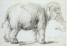 Hansken - Rembrandt  - Completion Date: 1637