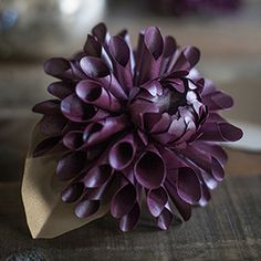 It is time for another paper flower! Dahlia's are one of my all-time favorites, partly because my name is included in the letters of this luscious bloom. Dahlias come in a variety of colors and sha...