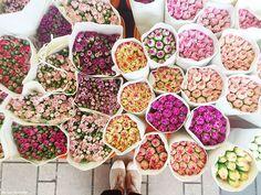 hong kong flower market / the love assembly #flowers #market
