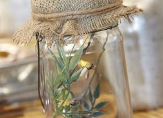 Would have never thought of a live bug as a centerpiece. I used live fish at my wedding! Sandra Lee Tablescapes, Rustic Comforter, Fireflies In A Jar, Cool Fish, Semi Homemade, Live Fish, Center Pieces, Spring Wedding, Mason Jars