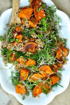 Farro & Roasted Sweet Potato Salad – Sarah Waldman