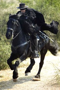 "Old West Theme: ""Zorro, Zorro, Zorro, Zorro, the fox so cunning and free."" Don't we all wish we could be as cool as Zorro racing around in a black cape on his black horse, Tornado, fighting tyranny with his sword and his whip?"