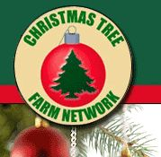 240 Best Christmas Tree Farm Images In 2019 Christmas Decor Merry