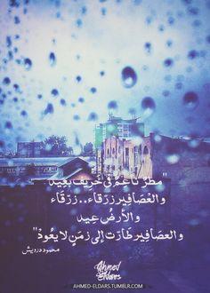 مطر ناعم في خريف بعيد و العصافير زرقاء.. زرقاء و الأرض عيد  و العصافير طارت إلى زمن لا يعود