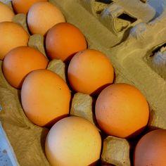 Farm fresh eggs from the Farmers Market!