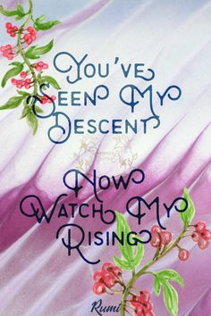 Youve seen my descent. Now watch my rising. Rumi Sometimes we...  Youve seen my descent. Now watch my rising. Rumi Sometimes we need to lay low and rest after a setback. Thats okay so long as we stand up again and keep going. 20/365