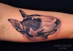 tattoo on pinterest bull terrier tattoo bull terriers and english bull terriers. Black Bedroom Furniture Sets. Home Design Ideas