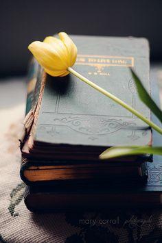 Vintage books and tulip Old Books, Vintage Books, Dali, Foto Still Life, Book Flowers, Soul Shine, Book Reader, Book Nooks, I Love Books