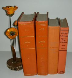 Vintage Orange Book Stack Tangerine Citrus 4 Books  Bright Home Library Decor. $35.00, via Etsy. Home Library Decor, Orange Book, Tropical Pool, Bright Homes, Orange You Glad, Red Books, Crazy Colour, Kitchen Themes, Stack Of Books