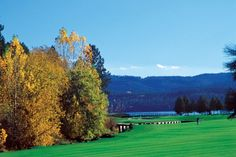 Fairways during the fall at Coeur d'Alene#Repin By:Pinterest++ for iPad#