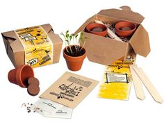 Herb Garden Kit, Garden Boxes, Rustic Hampers, Handmade Crafts, Diy And Crafts, Plant Box, Grow Kit, Painted Pots, Plant Design