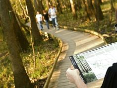 Congaree National Park is South Carolina's only national park, offering hiking, primitive camping, bird watching, canoeing, kayaking, and nature study. www.columbiacvb.com/outdoors