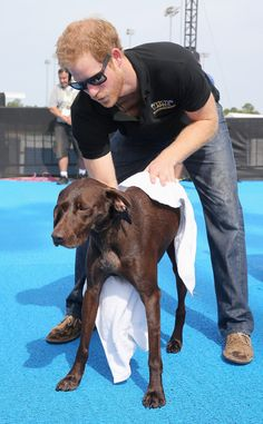 Prince Harry from The Big Picture: Today's Hot Pics  The sweet prince is spotted tending to the cute pup at the Invictus Games in Orlando, Florida.