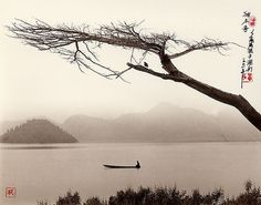 It does look like the traditional Chinese ink painting - by Don Hong-Oai, photographer.