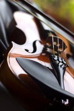 Violin by Jismon George on 500px