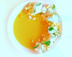 Modernist Mango Custard with Carbonated Calamansi Gel - coconut sorbet, freeze-dried mango, grapefruit segments and cilantro by Chef Russell Karath Coconut Sorbet, Dessert Presentation, Modernist Cuisine, Calamansi, Beautiful Desserts, Cuisines Design, Molecular Gastronomy, Culinary Arts, Plated Desserts