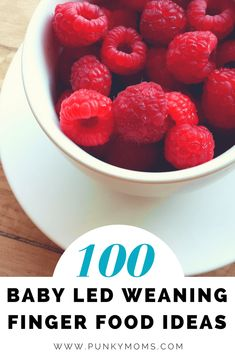 We have compiled a list of 100 Baby Led Weaning Finger Food Ideas! Unique and appetizing recipes that you will enjoy eating as well. Baby Led Weaning is a great method to allow them to grasp and examine food and in turn letting them learn to feed themselves! One less thing to worry about right?
