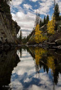 A Calm Stream, California