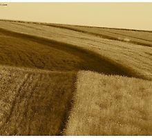 ♥ ♥ ♥ ♥ series. Galicia  -  Lesser Poland  -  landscape . Brown Sugar Book Story. Music by Fryderic Chopin  - Fantasie Impromptu . Fav 1 Views: 1501 . thx!  featured in Brain Science, Brain Arts. by © Andrzej Goszcz,M.D. Ph.D