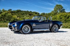 1965 Shelby Cobra For Sale Today