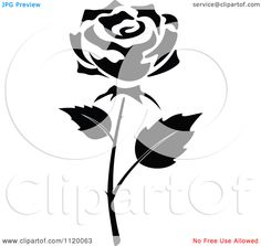 Flower Black And White Rose Background 1 HD Wallpapers | amagico.