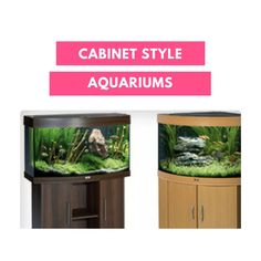 RENT AQUARIUM - Cabinet Style Aquariums - FROM LESS THAN £4.00 PER DAY. http://rentaquarium.co.uk/   #RentAquarium, #RentanAquarium, #AquariumLondon, #LondonAquarium, #London
