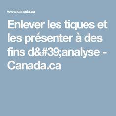 Enlever les tiques et les présenter à des fins d'analyse - Canada.ca